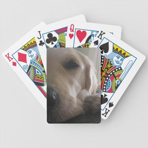 ¡Perro adolescente del golden retriever con actitu Cartas De Juego