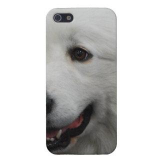 Perro adorable de los grandes Pirineos iPhone 5 Carcasas
