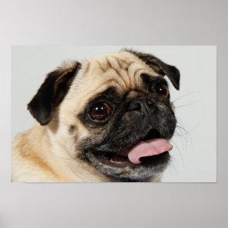 perro adorable del barro amasado póster