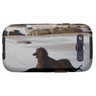Perro afgano en la playa de Deba, Guipuzcoa, Samsung Galaxy SIII Funda