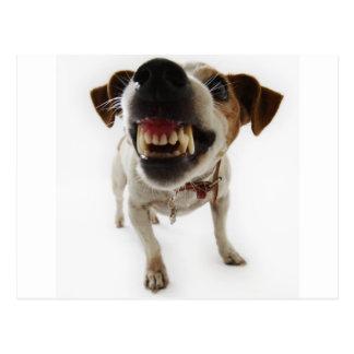 perro agresivo tarjetas postales
