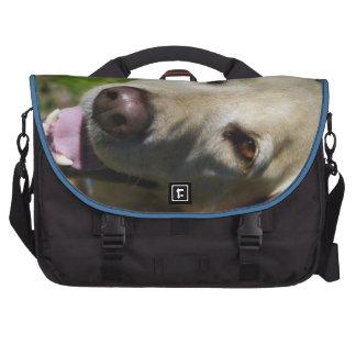 Perro amarillo del laboratorio bolsas de ordenador