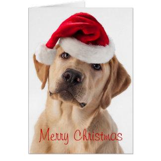 Perro amarillo lindo del laboratorio con la tarjeta de felicitación