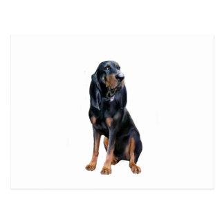 Perro americano del Coon - negro y moreno Tarjeta Postal