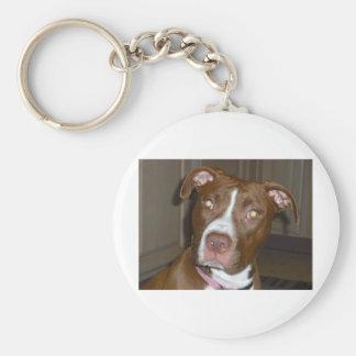 Perro americano del icono y de la familia de APBT Llaveros