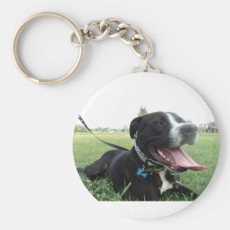Perro americano del icono y de la familia de APBT Llavero Personalizado