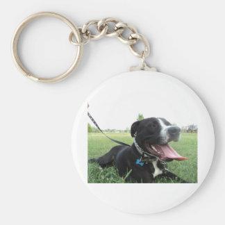 Perro americano del icono y de la familia de APBT Llaveros Personalizados