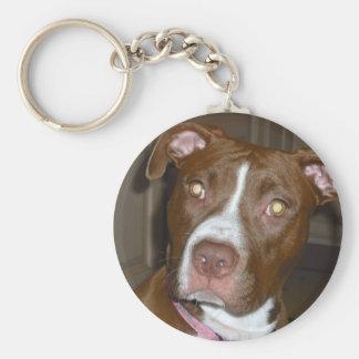 Perro americano del icono y de la familia de APBT Llavero