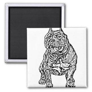Perro americano del matón imán cuadrado