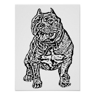 Perro americano del matón posters