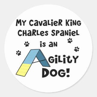 Perro arrogante de la agilidad del perro de aguas pegatina redonda