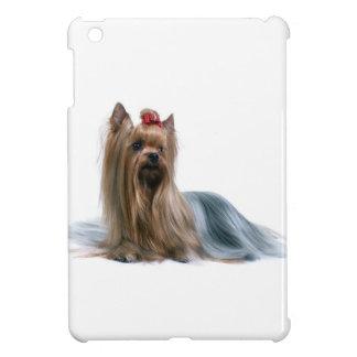 Perro australiano de la exposición canina de