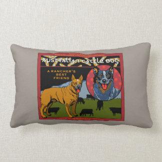 Perro australiano del ganado - el mejor amigo de u almohada