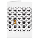 Perro australiano del ganado en las ovejas felicitacion