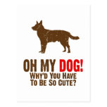Perro australiano del ganado postal