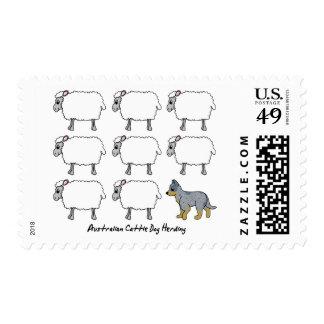 Perro australiano del ganado que reúne sellos de l
