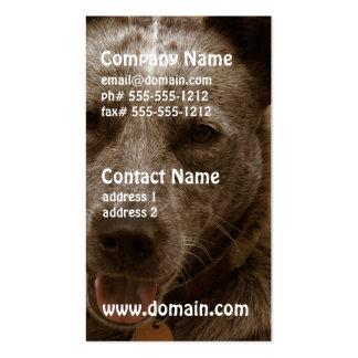 Perro australiano dulce del ganado tarjetas de visita