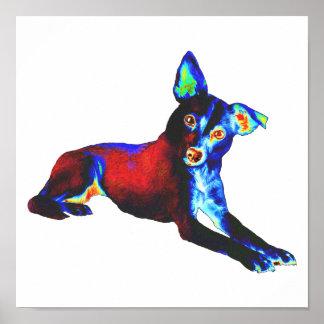 Perro azul póster
