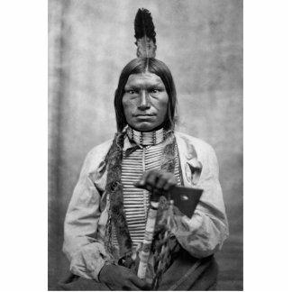 Perro bajo - foto del vintage del nativo americano fotoescultura vertical