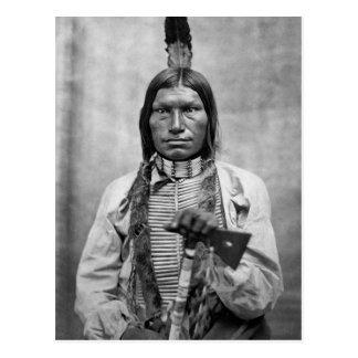 Perro bajo - foto del vintage del nativo americano postales