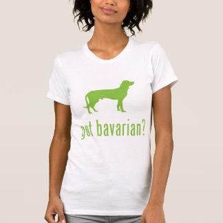 Perro bávaro de la montaña playera