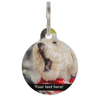 Perro blanco de bostezo identificador para mascota
