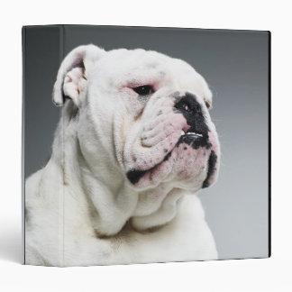 """Perro blanco de Bull Carpeta 1 1/2"""""""