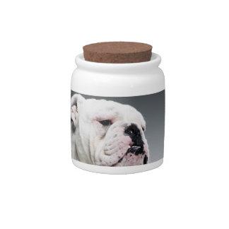 Perro blanco de Bull Platos Para Caramelos