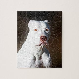Perro blanco del rescate de Pitbull Terrier del am Puzzles Con Fotos