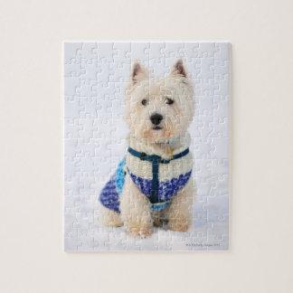 Perro blanco en ropa en la nieve rompecabezas