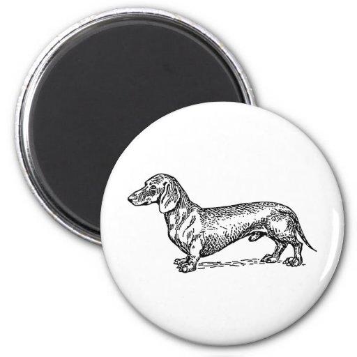 Perro blanco y negro de la salchicha de Frankfurt  Iman De Nevera