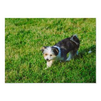 Perro blanco y negro invitación personalizada