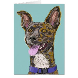 Perro bosquejado colorido de mirada divertido con tarjetas
