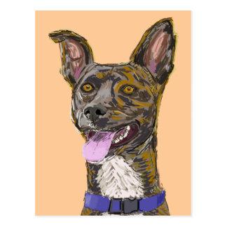 Perro bosquejado colorido de mirada divertido con postales