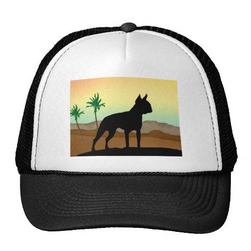 Perro Boston Terrier del desierto Gorras