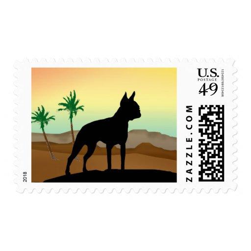 Perro Boston Terrier del desierto Timbres Postales