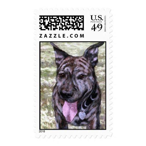 Perro Brindle de Amstaff Staffordshire Terrier Sello
