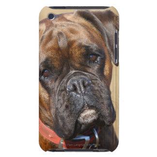 Perro Brindle del boxeador iPod Case-Mate Fundas