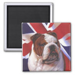 Perro británico de Bull Imán Para Frigorifico