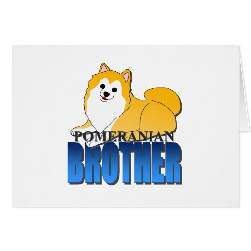 Perro Brother de Pomeranian Felicitacion