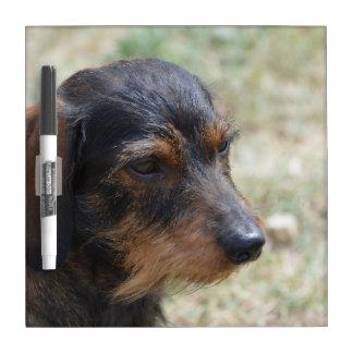 Perro cabelludo de Daschund del alambre Tablero Blanco