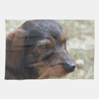 Perro cabelludo de Daschund del alambre Toalla