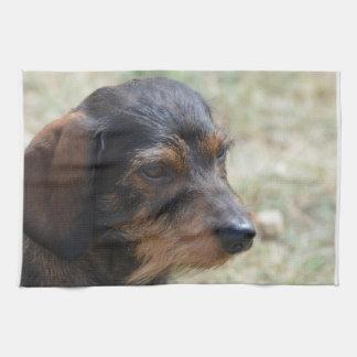 Perro cabelludo de Daschund del alambre Toalla De Cocina