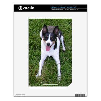 perro calcomanías para el NOOK color