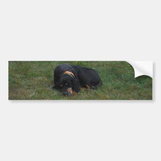Perro cansado etiqueta de parachoque