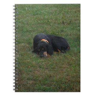 Perro cansado cuadernos