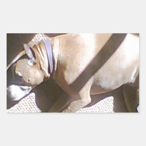 Perro cansado pegatina rectangular