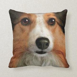 perro casero 11 de la almohada