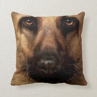 perro casero 12 de la almohada