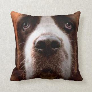 perro casero 13 de la almohada